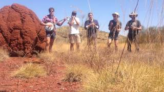 The Seals play Black Eyed Susie (termite mound edition)