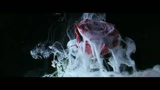 Martin Garrix & David Guetta - So Far Away Sub Español
