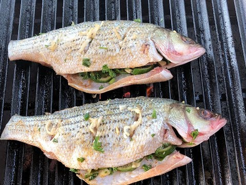 Oak Grilled Striped Bass On The 48