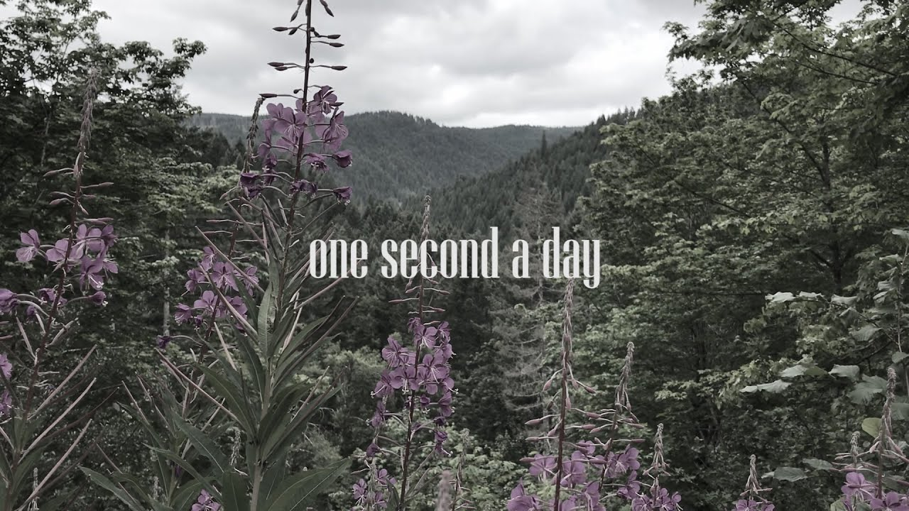 One Second A Day 2019