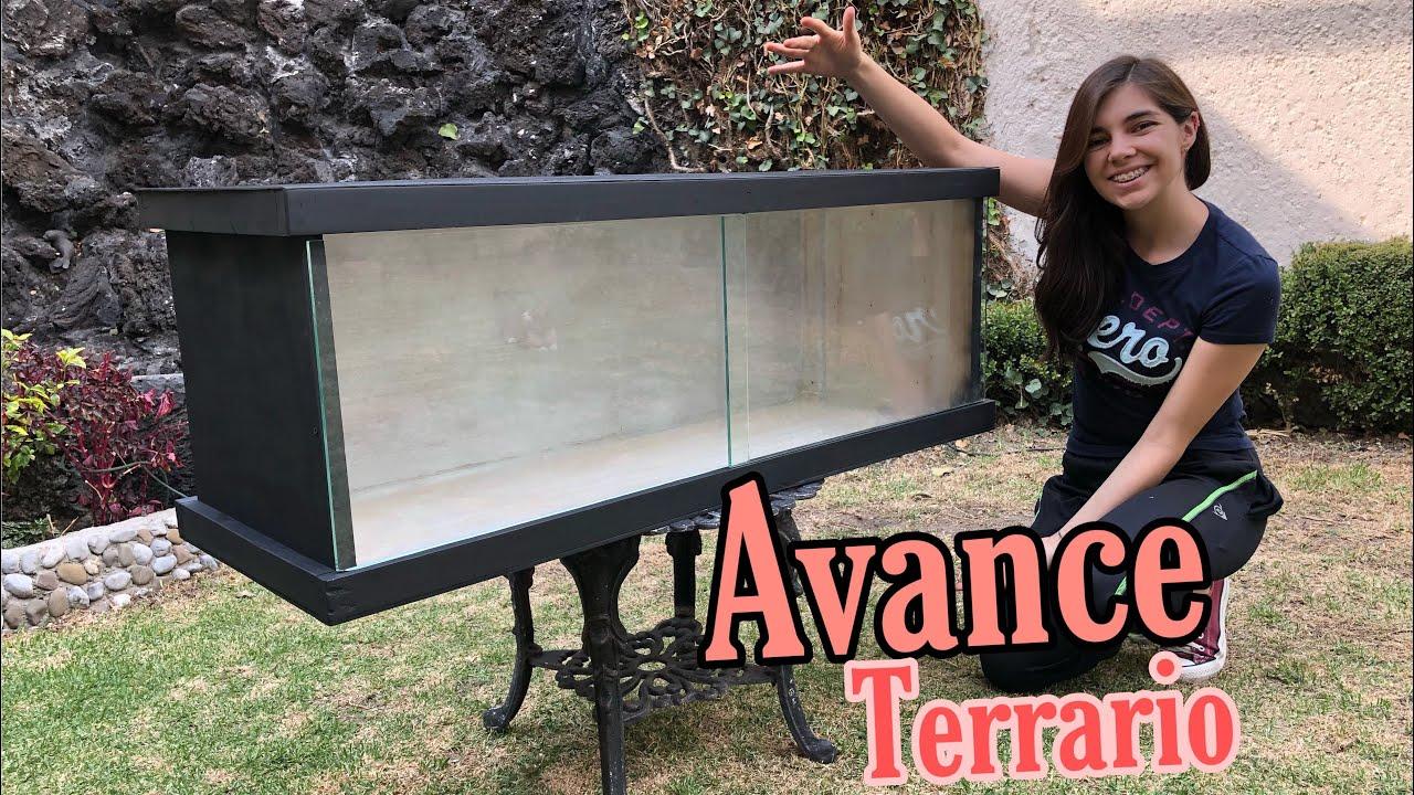 Avance Del Terrario De Madera Terrario Para Reptiles Youtube