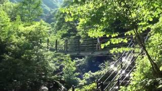 日本の滝百選  精進ヶ滝  Shoujigataki falls selected best 100 falls of Japan