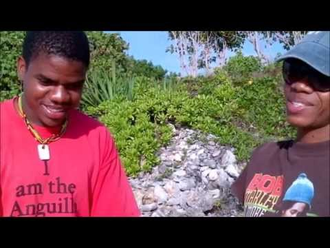 A walk with the Anguilla National Trust - Part One - Rendezvous Bay