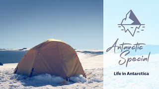 Life in Antarctica - Behind the News