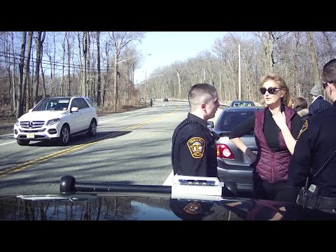 Caught on camera: commissioner tries to pull rank