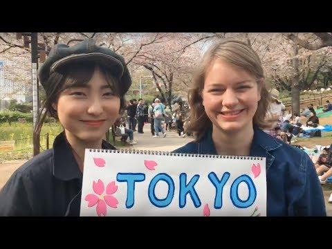 🌸 🌸 🌸 Tokyo Hanami Live 🌸 🌸 🌸