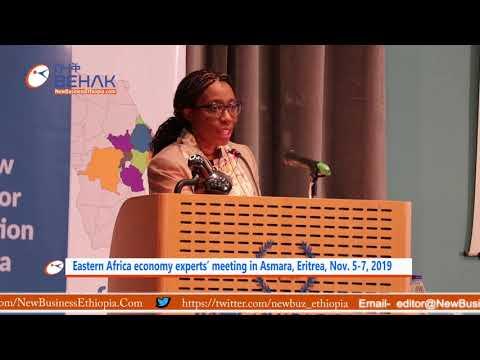Eastern Africa Economy Experts' Meeting In Asmara, Eritrea