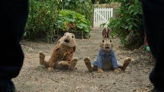 Las Travesuras de Peter Rabbit - Tráiler 2