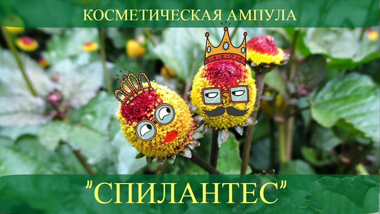 Вы можете купить пропиленгликоль с доставкой по всей украине.