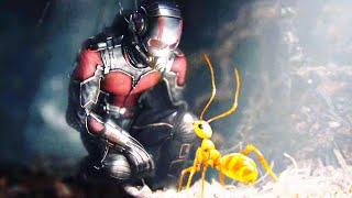 Ant-Man 1 + 2 (2018) Hindi / Urdu ဘာသာဖြင့်ရှင်းပြထားသည် Ant Man နှင့် Wasp နှစ်ခုစလုံးအကျဉ်းချုပ်हिन्दी