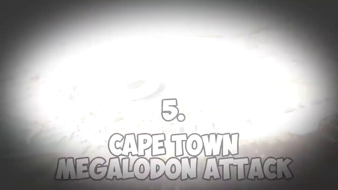5 Megalodon Caught on Camera & Spotted In Real Life! 20