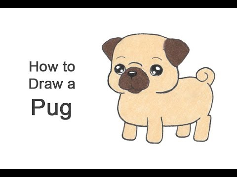 How To Draw A Pug (Cartoon)