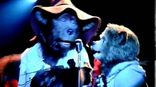 The Country Bears Straight To The  Heart Of Love