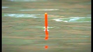 Бешеный клёв карася на УЛЬТРА ЛЕГКУЮ УДОЧКУ. Поплавочная ловля карася. Поклёвки крупным планом.