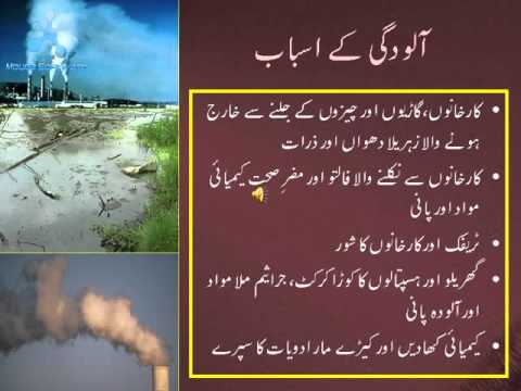 Essay on pollution in urdu language