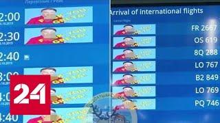 Смотреть видео Эко-защитницу Грету Тунберг оскорбил украинский аэропорт - Россия 24 онлайн