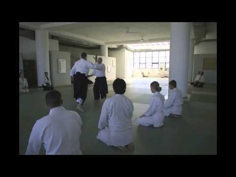 Didier Boyet Shihan - Hellenic Birankai - June 2014 - Part 02