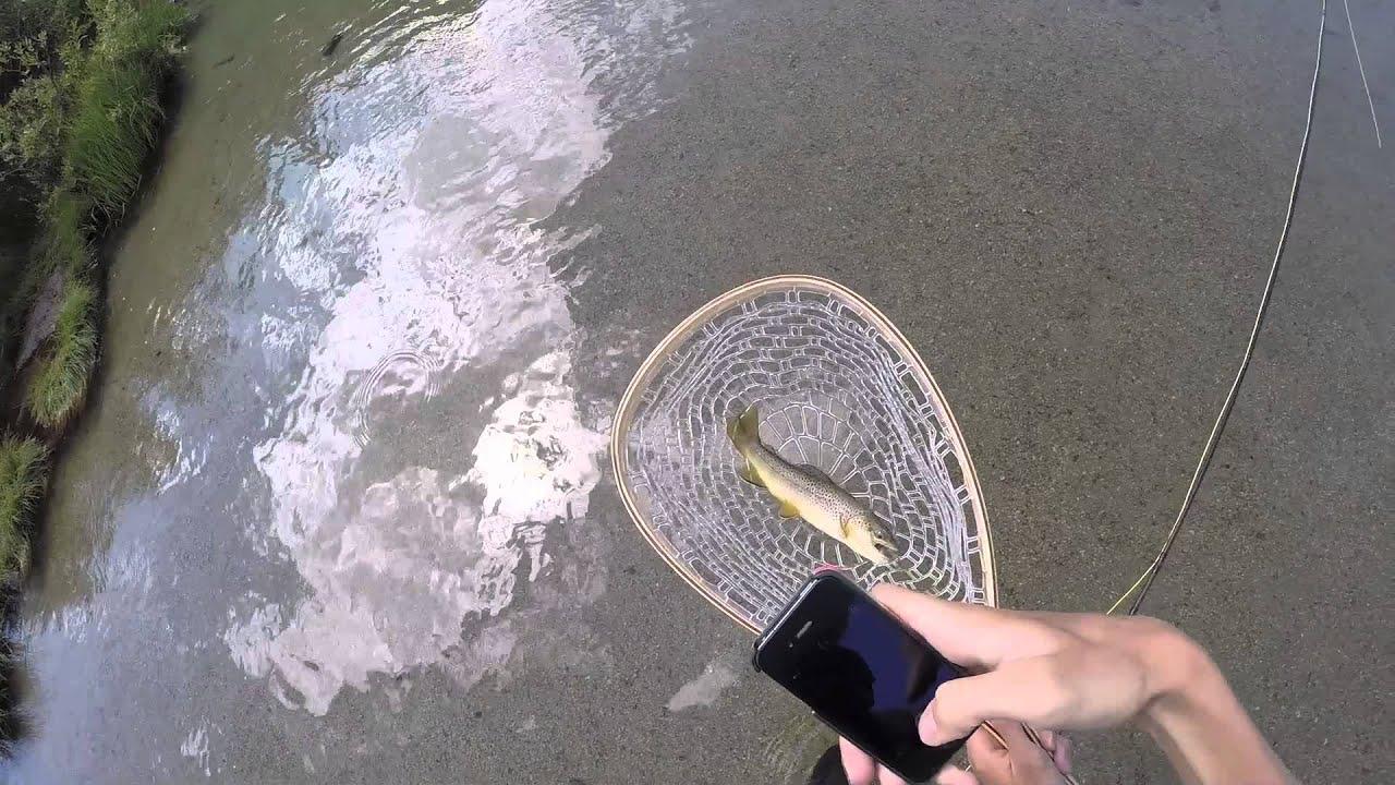 Fly fishing bishop creek youtube for Bishop creek fishing