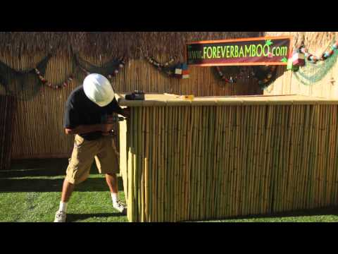Bamboo Fencing Options