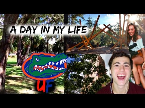 Day in My Life - University of Florida!