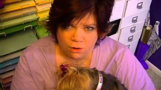 I'm Not breastfeeding my dog- Vlog #115