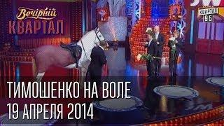 Тимошенко на воле, встречают - Янукович, Кличко, Луценко, Яценюк | Вечерний Квартал 19. 04.  2014(Номер