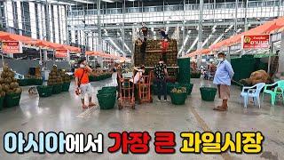 태국에 아시아에서 가장 큰 과일시장이 있다고? 과일 가…