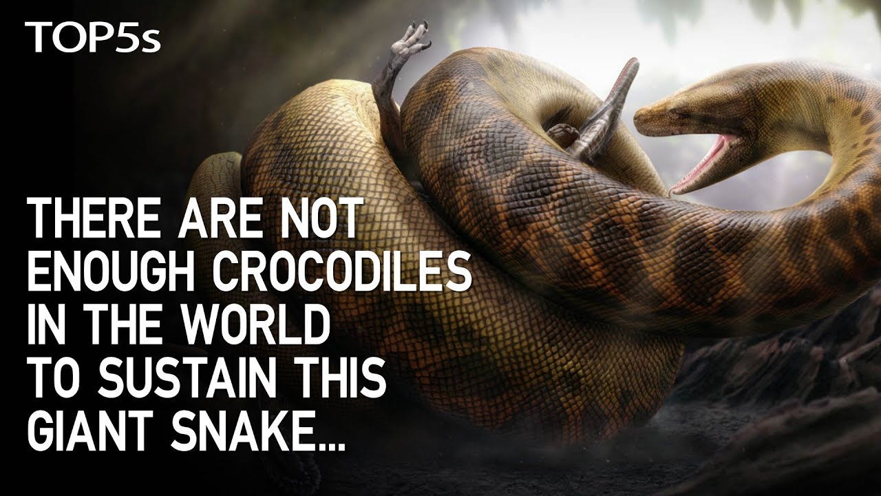 5-extinct-animals-that-could-never-survive-in-today-s-conditions