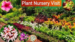 Roadside plant nursery visit, Plant price with names || Shri Ram Nursery || cheapest plant nursery