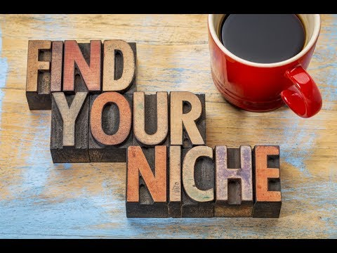 4 Steps to Finding Your Profitable LIFE COACHING NICHE, w. Client Case-Study
