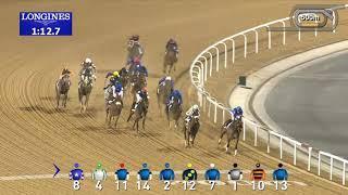 Vidéo de la course PMU UAE 1000 GUINEAS