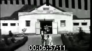 Терский конный завод. Международный аукцион скакунов арабской и ахалтекинской породы. 1973 год(Аукцион на Терском конном заводе в 1973 году., 2013-11-02T08:34:59.000Z)