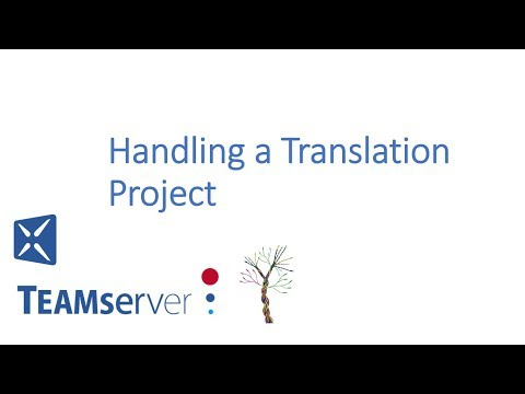 Handling a Translation Project with TEAMserver