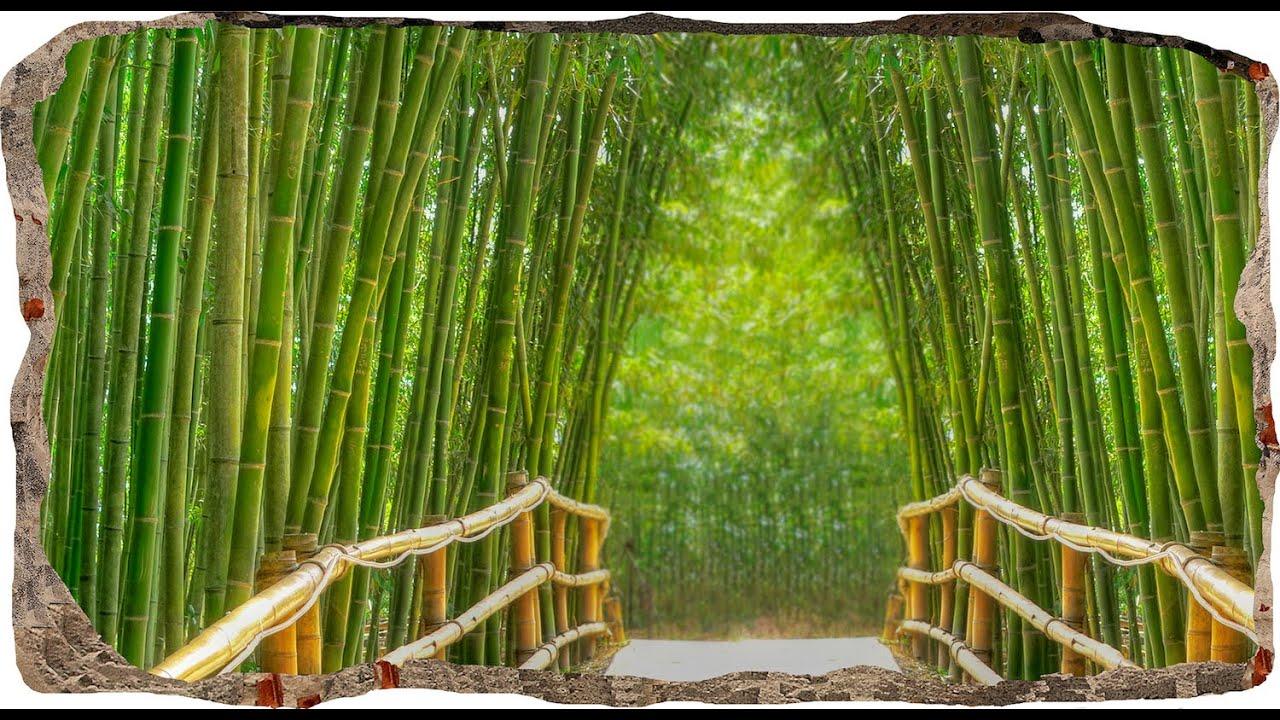 green bamboo bridge startonight 3d mural wall art 3dmural028 youtube. Black Bedroom Furniture Sets. Home Design Ideas
