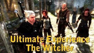 Skyrim MOD - Ultimate Experience The Witcher + Followers, Armors and Swords