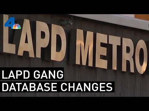 State Pulls LAPD Info From Gang Database After Officers Charged With False Reports | NBCLA