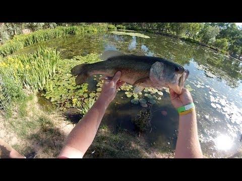 Spro Bronzeye Frog Fishing