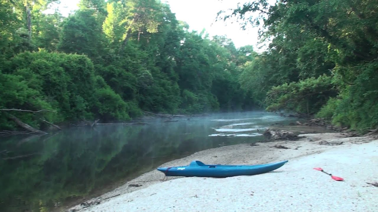 Morning Mist At A Sandbar Campsite Along Black Creek In De