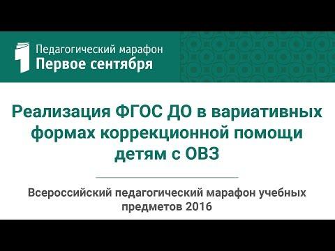 Реализация ФГОС ДО в вариативных формах коррекционной помощи детям с ОВЗ