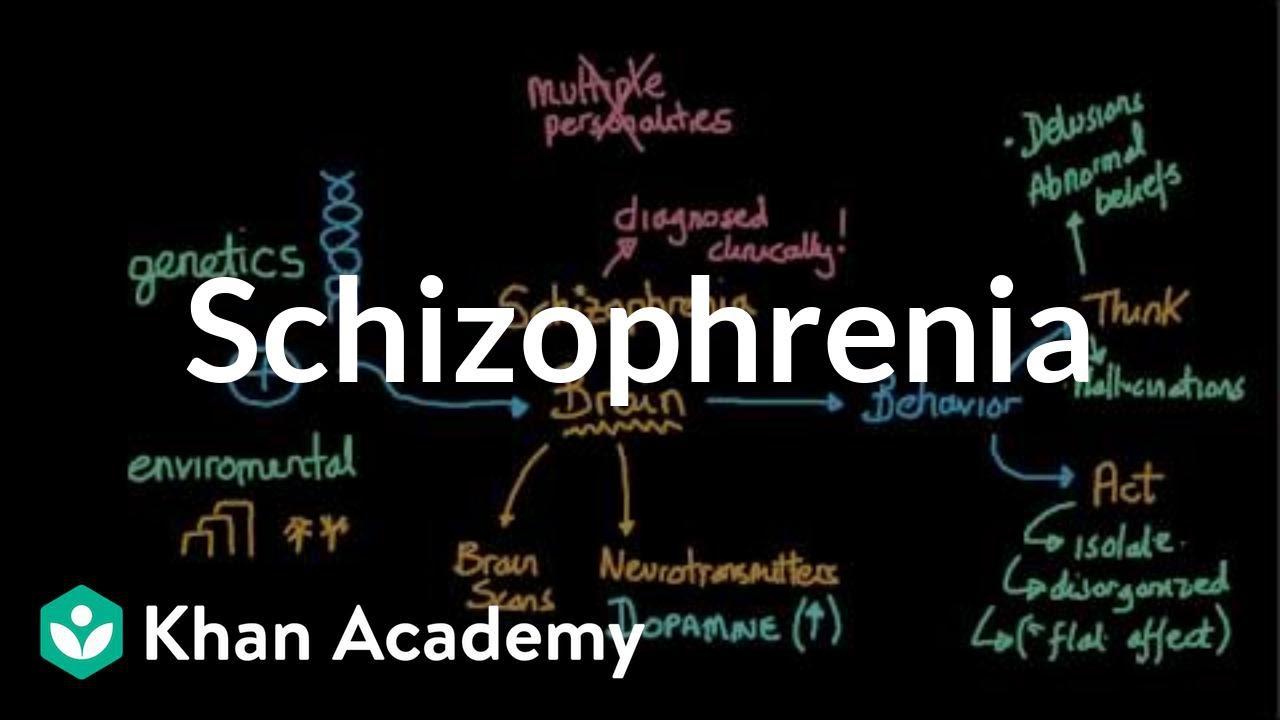 Behavior Schizophrenic Patients