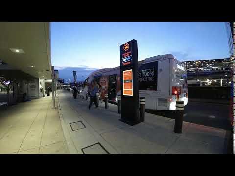 Brisbane Airport Corporation -- Digital Bus Stops