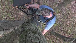 How to hang a tree stand
