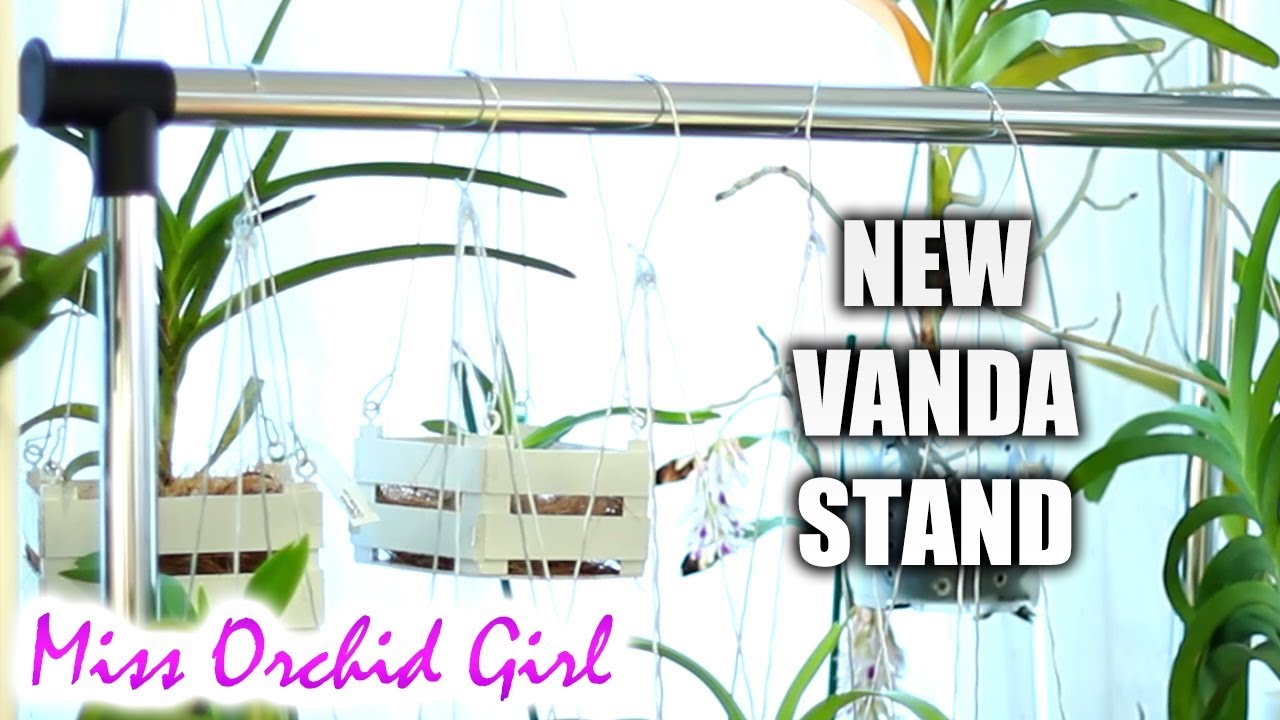 New Vanda Orchid Stand From Home Improvement