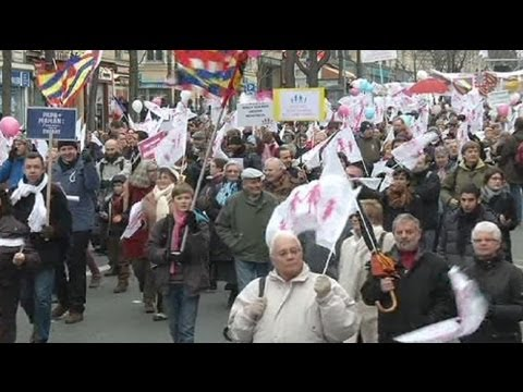 Mass protests in Paris against gay marriage