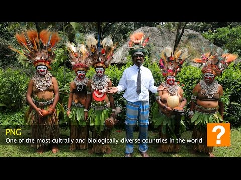 How to dance the Weyda: Wilbur in Papua New Guinea