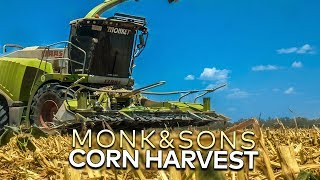 Corn Harvest 2019: Monk & Sons AG | Australia