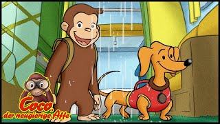 Coco der Neugierige 🐵125 Der Camping-Ausflug 🐵 Ganze Folgen 🐵 Cartoons für Kinder🐵 Staffel 1