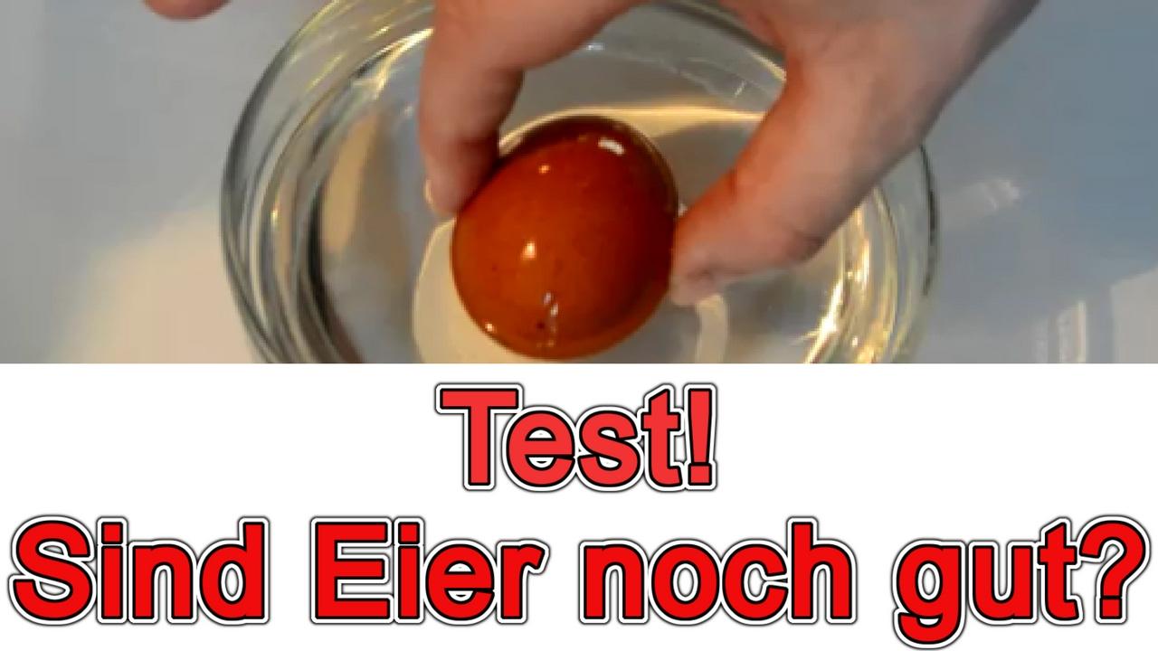 Test Ob Eier Gut Sind
