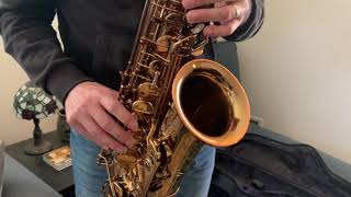 Ishimori Woodstone Alto Saxophone Video Demo