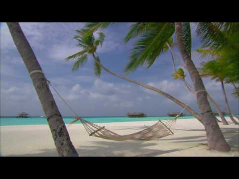 [10 Hours] Maldives Islands - Hammock between Palm Trees [1080pHD] SlowTV
